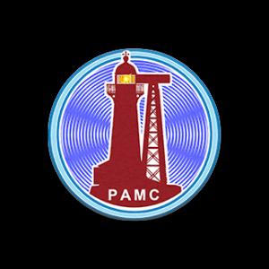 О проекте РАМС